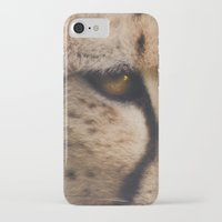 cheetah iPhone & iPod Cases featuring Cheetah  by Pauline Fowler ( Polly470 )