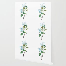vintage blue hydrangea watercolor   Wallpaper