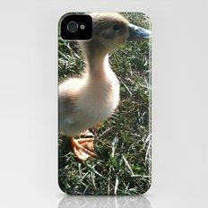 Duckling iPhone (4, 4s) Slim Case