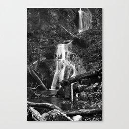 Wasserfall Fischbach Deutschland 2014  Waterfall Fischbach Germany 2014 Canvas Print