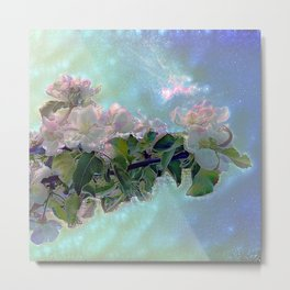 White flower on blue sky Metal Print