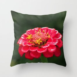 Macro photo red flower Throw Pillow
