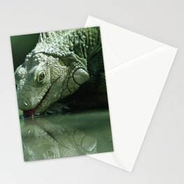 Drinking Iguana Stationery Cards