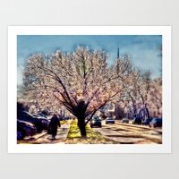 After the Ice Storm Art Print