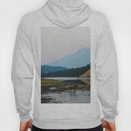 Dreamy Elk Sunset Hoody