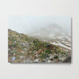 Alpine Wildflowers in Snow Metal Print