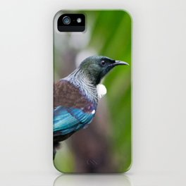 New Zealand Tui iPhone Case
