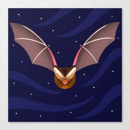 Barbastelle Bat Canvas Print