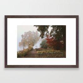 Autumn palette Framed Art Print