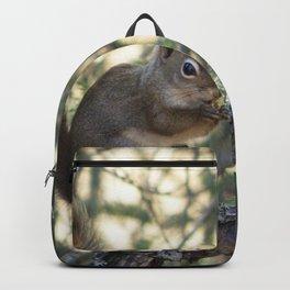 Soldotna Red Squirrel Backpack