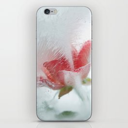 Ice cold rose iPhone Skin