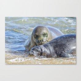 Mama Monk Seal and Pup at the Shoreline, No. 2 - RB00 and PK1 Canvas Print