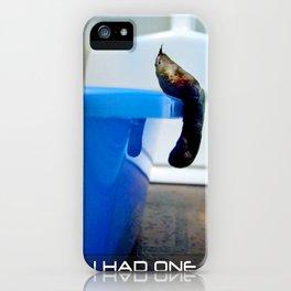 Uncooperative Cat iPhone Case