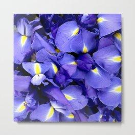Glorious Royal Purple Iris Flowers Metal Print