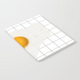 EGG Notebook