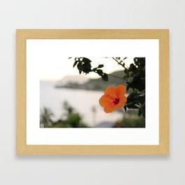 Hibiscus, Kahaluu Framed Art Print