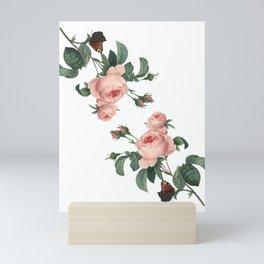Butterflies in the Rose Garden on White Mini Art Print