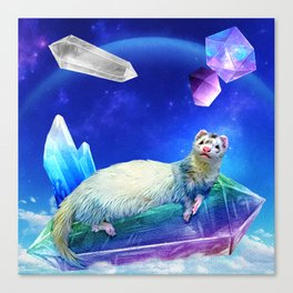 Ferret in the Sky with Crystals Canvas Print