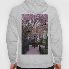 Astoria Spring Hoody