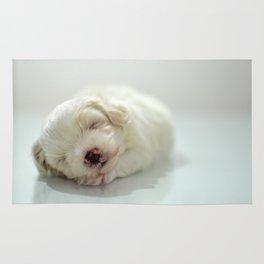 Maltese Puppy Sleeping Rug