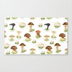 Edible Mushrooms Canvas Print