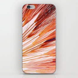 Coral Wheat Burst iPhone Skin