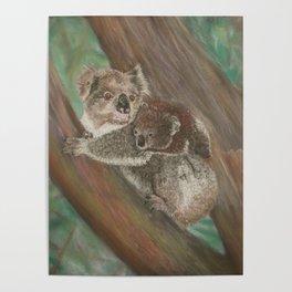 Koala Love with Joey Poster