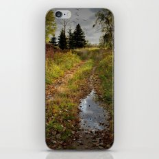 Morning After iPhone & iPod Skin