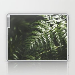 Moody Forest / Nature Photography Laptop & iPad Skin