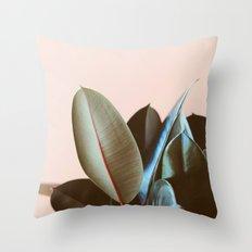 Ficus Elastica #1 Throw Pillow