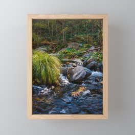 Sedona Oak Creek Framed Mini Art Print
