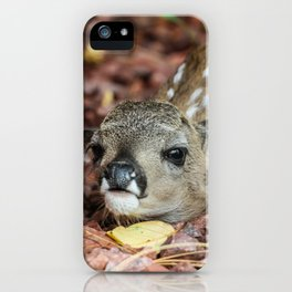 Pine Fawn iPhone Case
