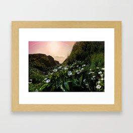 Calla Lily Valley in Big Sur, California  Framed Art Print