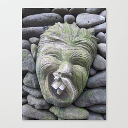 Funny Face in Bali (2010c) Canvas Print