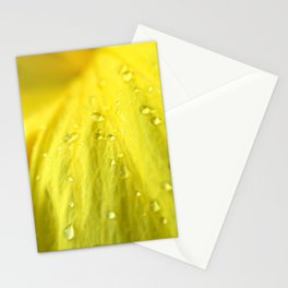 Raindrops on Petals Stationery Cards