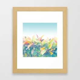 After the rain / Tropical Croton Leaves 4 Framed Art Print