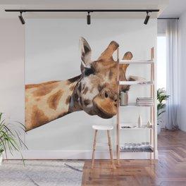 Giraffe portrait Wall Mural