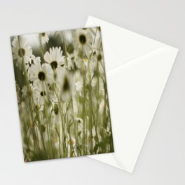 white daisies :) Stationery Cards