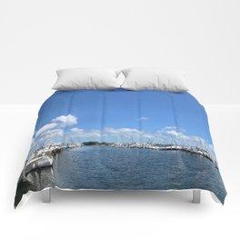 Coconut Grove Comforters