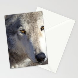 Watercolor Wolf Mask 02 Stationery Cards