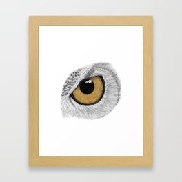 Gold Owl Eye Framed Art Print