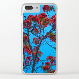 Monroe County Clear iPhone Case