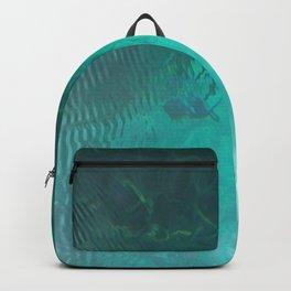 Silver Springs Backpack