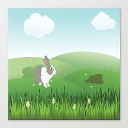 Dutch rabbit in field Canvas Print