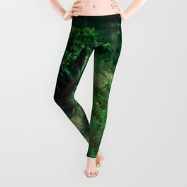 Abstract illustration of fairy fly in the forest Leggings