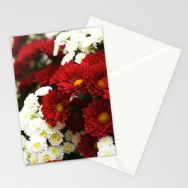 Red and White Burst Stationery Cards