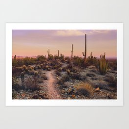Sonoran Sunset Art Print