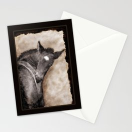 Black Foal Scratching (softcanvas) Stationery Cards