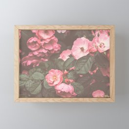Pink Flowers in the Morning Framed Mini Art Print