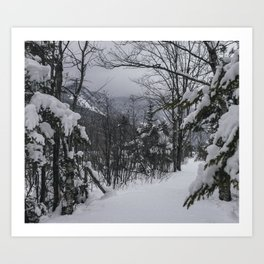 Winter in the Whites Art Print
